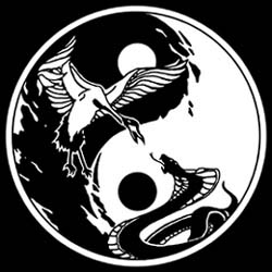 Wing Chun World
